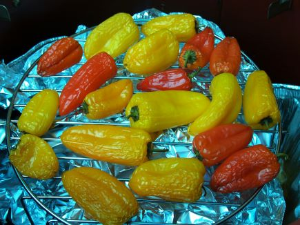 Recipes For Smoking Vegetables with Woodabrix Chips